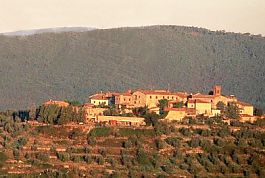 Tuscany Tour: Chianti Guided Tour